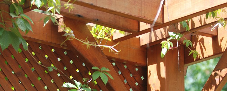 pergola fence staining